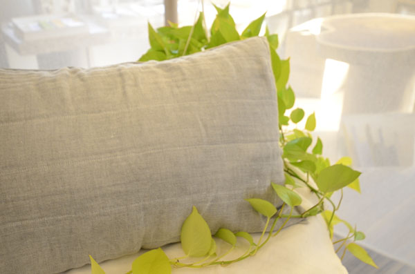 Pillow Case 2